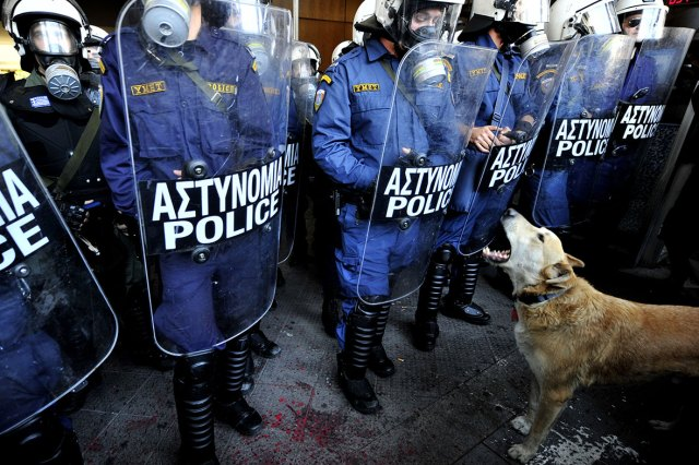 loukanikos-greece-riot-dogthr